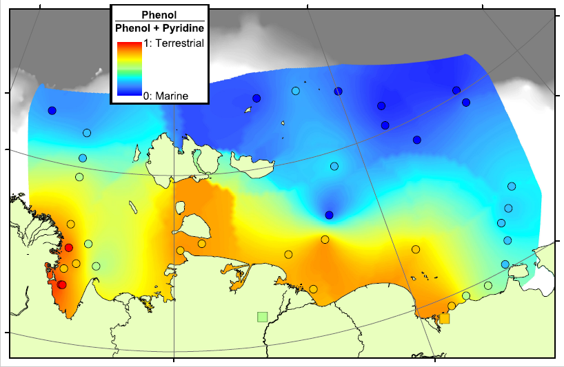 Phenol-Pyridine ratio on the Arctic Shelf