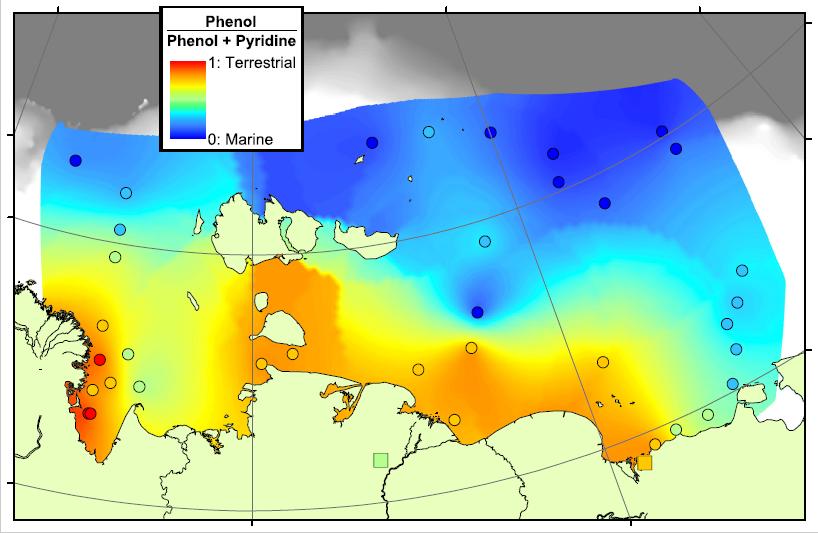 Phenol-Pyridine ratio on the Arctic Shelf